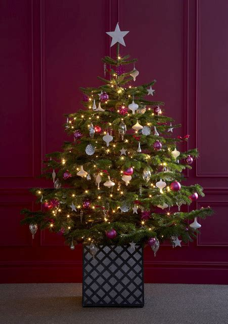 5 reasons why you should buy low voltage christmas lights
