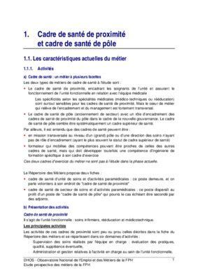 projet professionnel de cadre de sante pdf notice manuel d utilisation