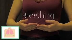 Flute Breathing For Any Flutist
