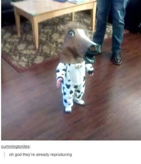 Horse Head Meme - image 692061 horse head mask know your meme