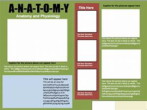 informational poster template design 1 instructional With informative poster template