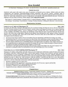 Program analyst resume printable planner template for Management analyst resume federal government