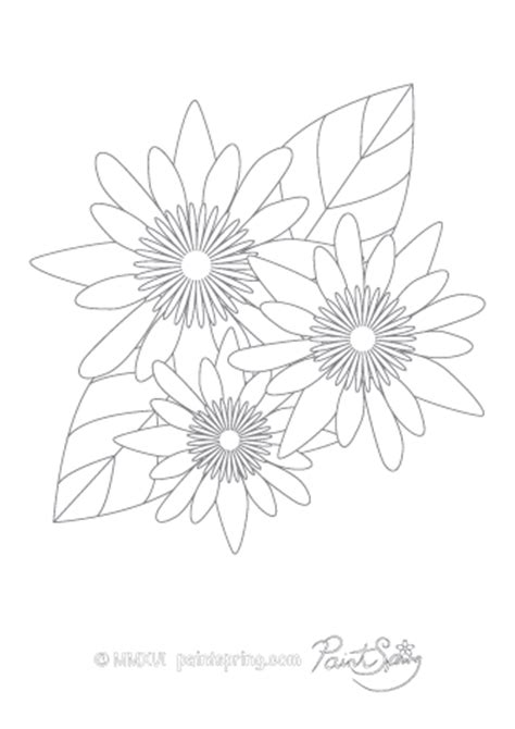 printable flower adult coloring book    pages