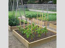 Simple Vegetable Garden Ideas for Your Living Amaza Design