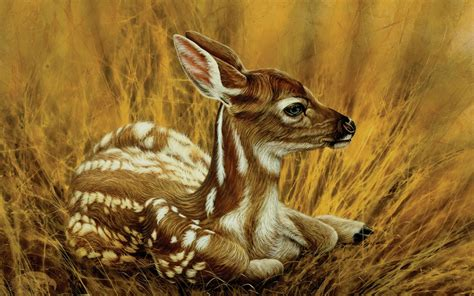 camouflage fawn deer wildlife art painting chester fields