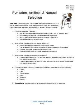 Stimulated by the nth discussion with zachriel on this point, i would like to offer here some thoughts about the difference between natural selection and artificial selection. Evolution, Natural Selection & Artificial Selection: Worksheet or Quiz   Science lesson plans ...