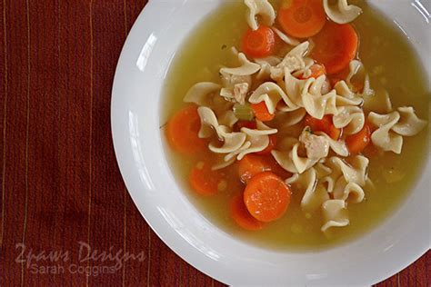 progresso light chicken noodle soup resolution healthy 2paws designs