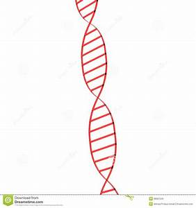 Single Dna Structure Royalty Free Stock Photo