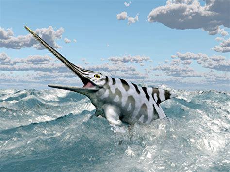 3d Animal Wallpaper 3d Fish Wallpaper - wallpapers fish eurhinosaurus sea 3d graphics sky clouds