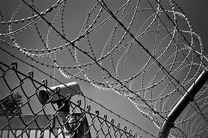 Grayscale Photo Of Barbed Wire  U00b7 Free Stock Photo