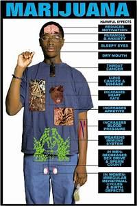 good effect of marijuana in the body
