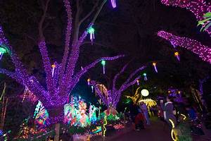When Is Zoo Lights In Houston Houston Zoo Txu Energy Presents Zoo Lights Zoo Lights