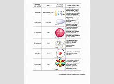 Modelos Atomicos De Democrito A Bohr newcalendar