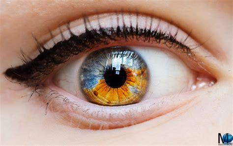 Colore Degli Occhi Diversi by Gli Occhi Pi 249 Incredibili Abbiate Mai Visto Grazie