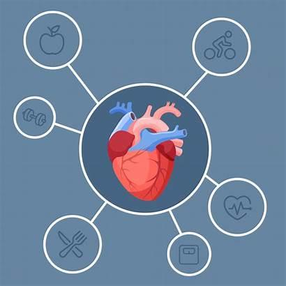 Disease Heart Health Problems Cardiovascular Medical Explained