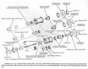 Bicycle Hub Diagram  Bicycle  Free Engine Image For User Manual Download