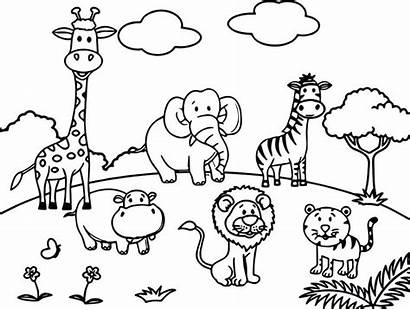 Coloring Wild Pages Animals Animal African