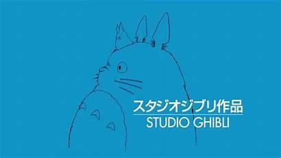 Totoro Tonari Ghibli Vecino Mi 22xd