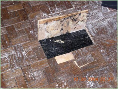 mastic tile adhesive asbestos asbestos mastic glue yelp