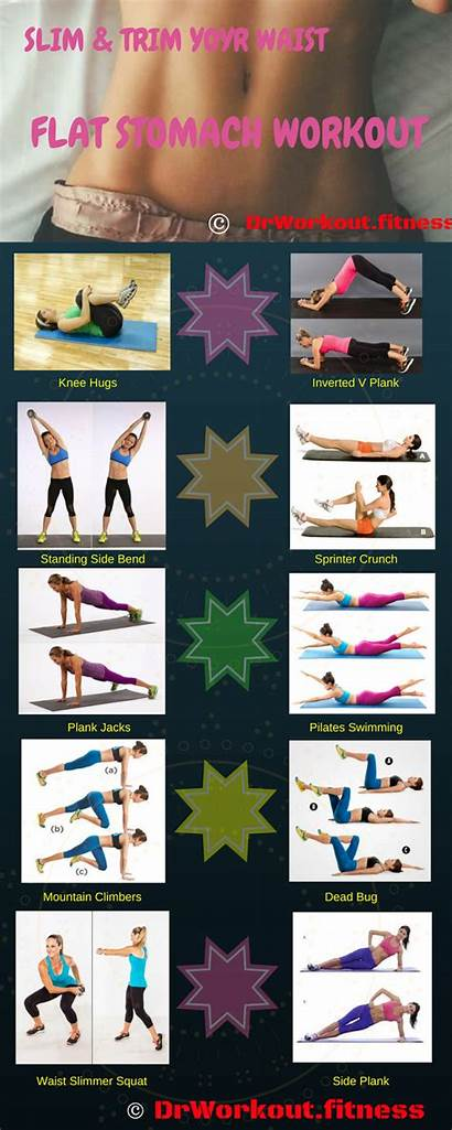Workout Plan Gym Bikini Ab Week Circuit