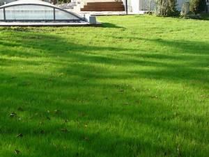 Les Jardins Du Sud : paysagiste sur toulouse paysagiste toulouse les ~ Melissatoandfro.com Idées de Décoration