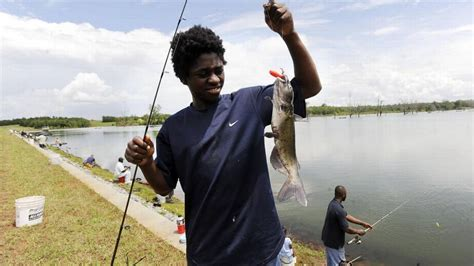 georgia opens public fishing areas  days  week