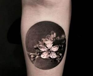 Tatouage Arbre Japonais : fleur de cerisier tattoo cool banque dimages tatouage ~ Melissatoandfro.com Idées de Décoration