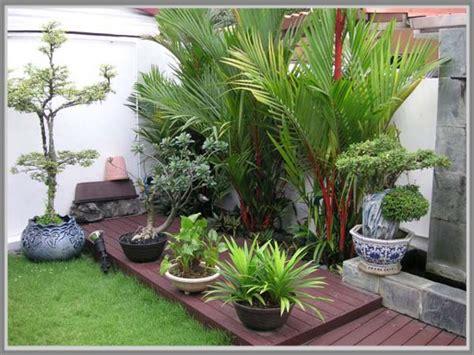 menata tanaman pot  taman minimalis