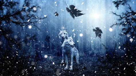 Backgrounds Laptop by Free Winter Wolves Chromebook Wallpaper Ready For