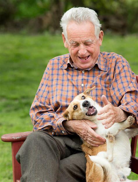 man playing  dog stock image image