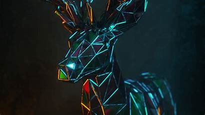 3d Deer Polygon Geometric 4k Wallpapers Background