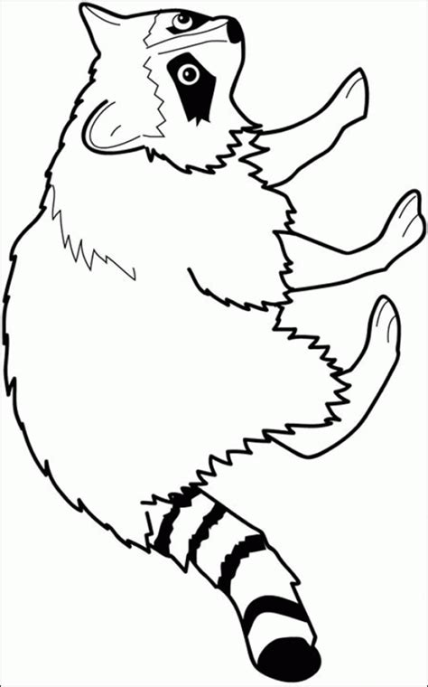 coloring page   raccoon coloring home