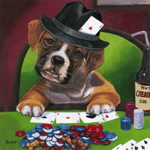 Image result for dog poker