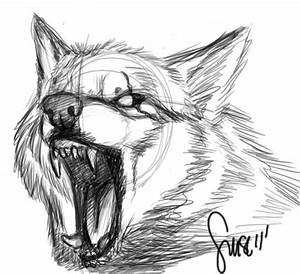 Wolf growl sketch by Werewolfsense on DeviantArt