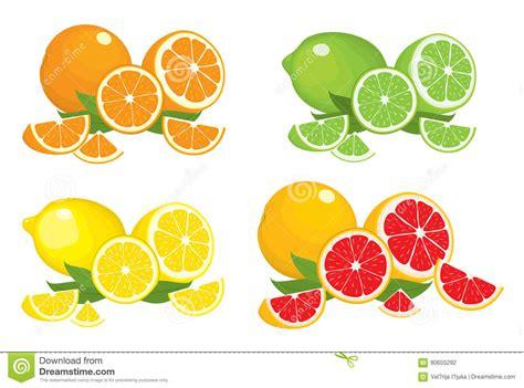 Collection Citrus Products Orange Lemon Lime