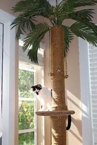 Kletterbaum Für Katzen : die besten 17 ideen zu kratzbaum selber bauen auf ~ Lizthompson.info Haus und Dekorationen