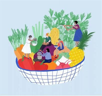 Healthy Bowl Colors Plate Workshops Illustration Colored