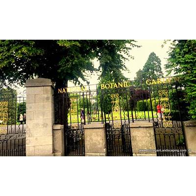 Garden Talk: National Botanic Gardens Dublin. Saturday