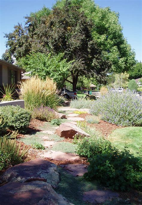 landscaping design ideas for backyard denver softscapes landscape connection