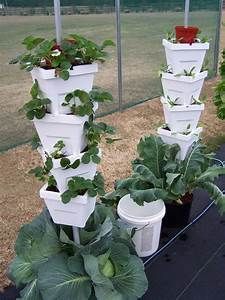 Pin By Maine Agrability On Vertical Gardening