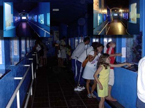 visite de l aquarium de banyuls sur mer 66 aquarium