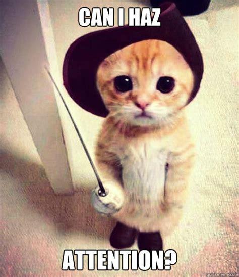 Attention Meme - attention cat memes quickmeme
