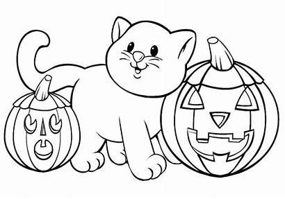 Coloring Halloween Pumpkin Cat Pumpkins