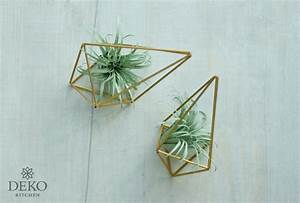 Deko Aus Papier : diy s e tillandsien air plants aus papier deko kitchen ~ Eleganceandgraceweddings.com Haus und Dekorationen