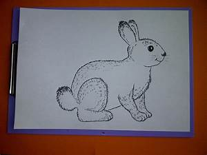 Zeichnungen Mit Bleistift Für Anfänger : zeichnen lernen f r anf nger wie malt man einen hasen kaninchen drawing an easter bunny youtube ~ Frokenaadalensverden.com Haus und Dekorationen