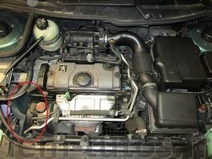 Peugeot 206 Essence : changement de la courroie accessoire d une peugeot 206 essence 1 4l iem tutos ~ Medecine-chirurgie-esthetiques.com Avis de Voitures
