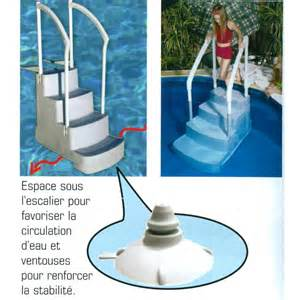 Escalier Pour Chien Piscine by Escalier Fiesta Pour Piscine