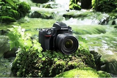 Camera Dslr Nikon D750 4k Slr Nature