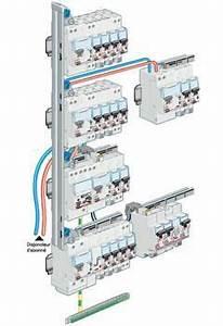 Schema Tableau Electrique Triphasé : c blage tableau lectrique branchement protection et ~ Voncanada.com Idées de Décoration