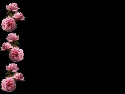 pin  art lavaux  black background pink  black